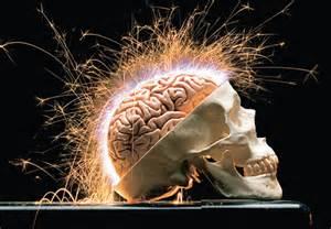 cérebro2